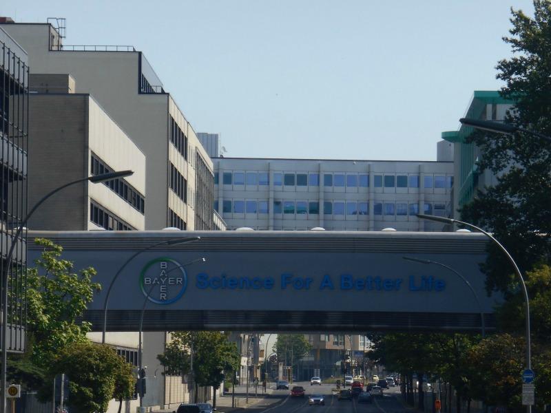 Steven Immergut To Lead US Pharmaceutical Comms For Bayer