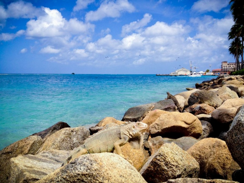 Aruba Seeks Agency To Help Boost Tourism