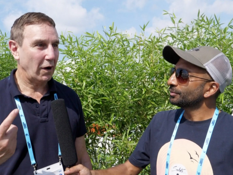 Video: Industry CEOs Weigh In On PR Performance At Cannes 2018