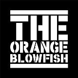Junior Graphic Designer - The Orangeblowfish