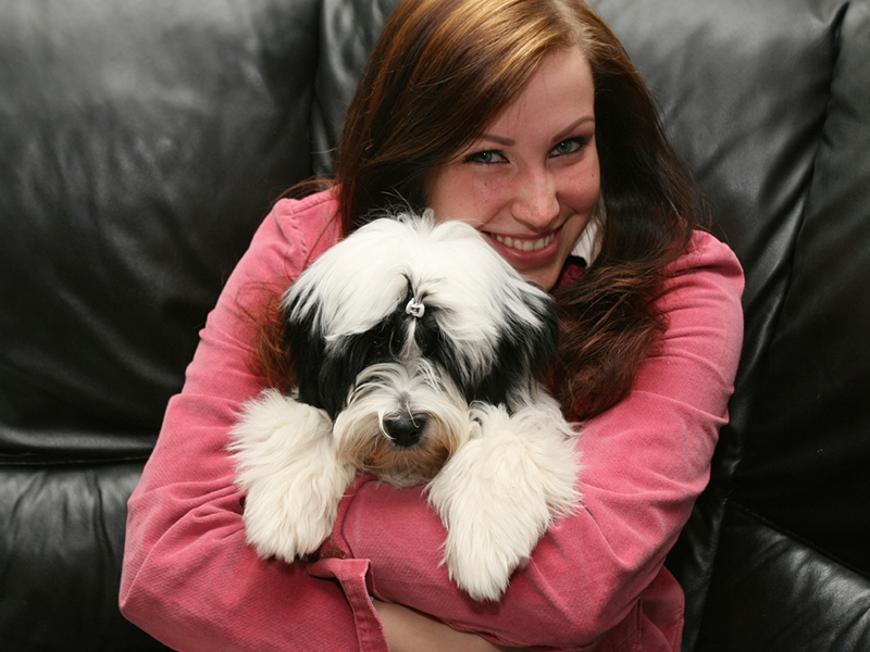 Pet Owners Vs Pet Parents