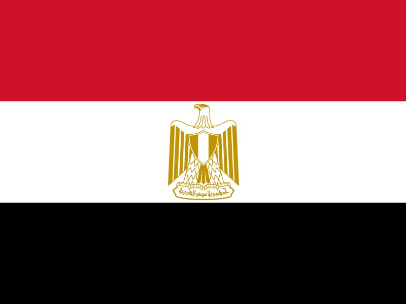 APCO Takes Over Controversial Egyptian Government Account