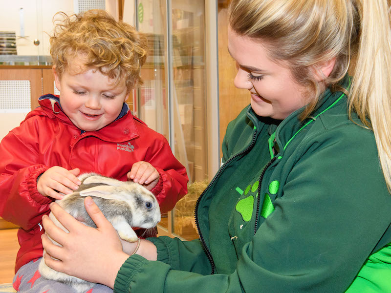 Pets At Home Hands UK PR Duties to Cirkle